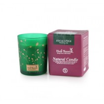HERB THYME Cup Candle CC Series CC-03 (Eucalyptus)