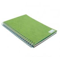480gsm 單面皮紋夾咭 A4 - 綠色 (50張裝)