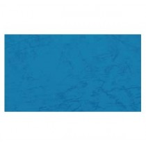 230gsm 雙面皮紋紙 A4 - 藍色 (100張裝)